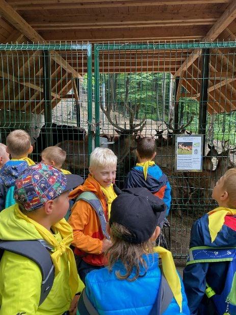 Dzieci na wycieczce w Parku Leśnych Niespodzianek w Ustroniu